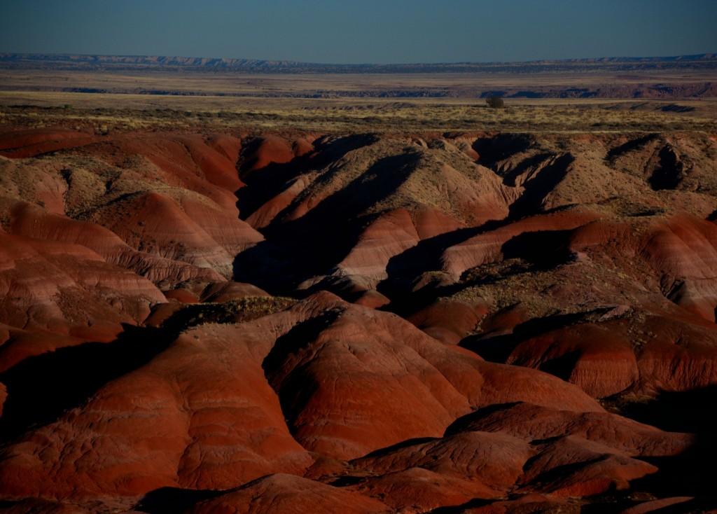 Red Rocks 12-13 542