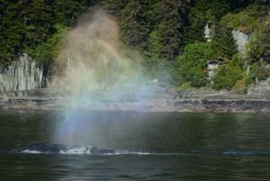 Juneau 5-16 643