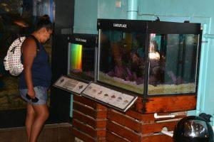 LA museums 7-16 040