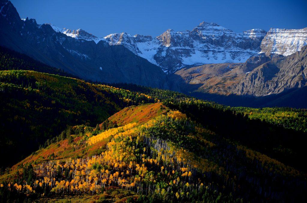 Colorado 10-11 256
